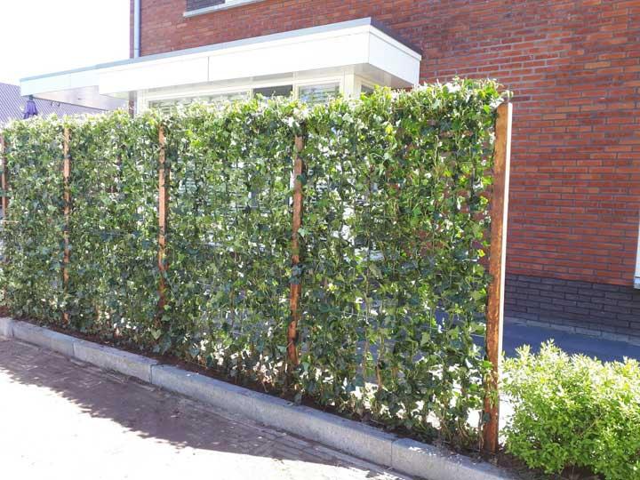 De cette façon, vous créez plus d'intimité dans votre jardin de manière naturelle